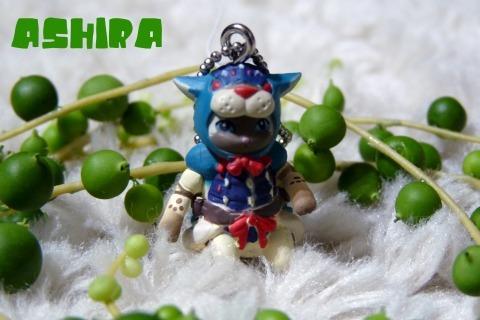 ashira.jpg